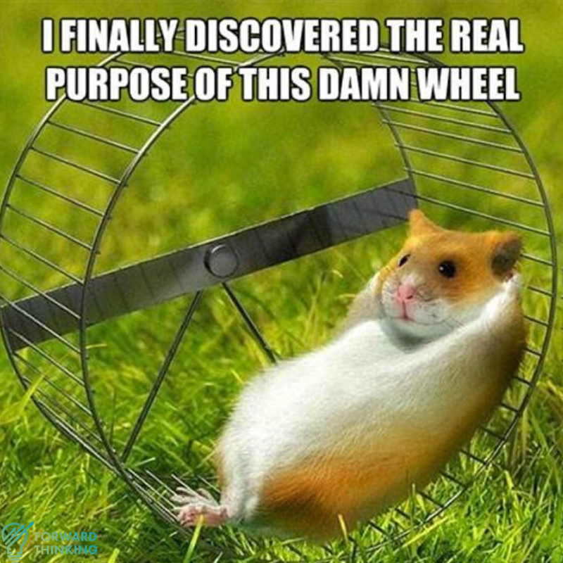 How To Get Off The Hamster Wheel